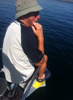 Michael behauptet, er könne Delphine herbeipfeifen. Gleich beim ersten Versuch klappt es. Danach nicht mehr.